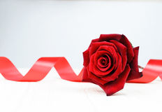 The red rose on the large white plate Stock Photo