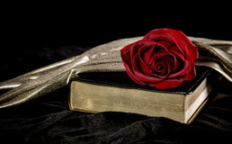 Red Rose laying on a Bible Royalty Free Stock Photography