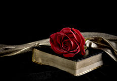 Red Rose laying on a Bible Stock Photography