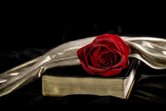 Red Rose laying on a Bible Stock Photo