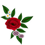Red rose with leaves and daisies on a white background. Royalty Free Stock Photography
