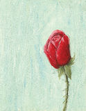 Red rose on light blue background. Acrylic illustration of red rose on light blue background Stock Photography