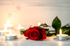 Red rose is among lighted candles. Royalty Free Stock Photos