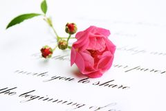Red rose on love letter Stock Photos