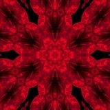 Red rose mandala. On the black background Stock Photography