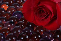 Red rose and marbles Royalty Free Stock Photo