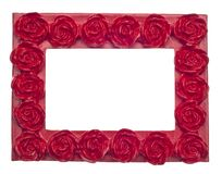 Red Rose Modern Vibrant Colored Empty Frame Royalty Free Stock Photo