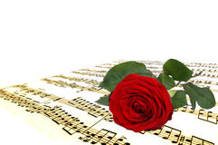 Red rose and music notes Royalty Free Stock Photos
