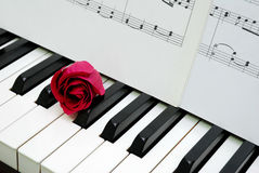 Red rose and music score on piano keyboard. Signifying concepts such as love of music, creativity and love and romance stock photo