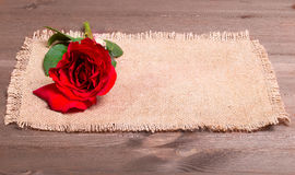 Red rose on a napkin from a sacking Royalty Free Stock Photos