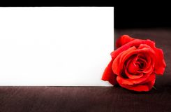 Red rose near blank gift card for text on old wood background Royalty Free Stock Images