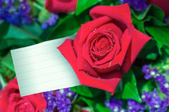 Red rose with note paper Royalty Free Stock Images