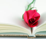 Red rose on a notebook. Royalty Free Stock Photo