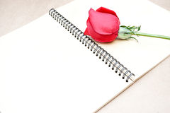 Red rose on notebook. Red rose on open notebook Stock Images