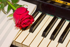Red rose with notes paper on piano Royalty Free Stock Photo