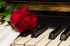 Red rose with notes paper on piano Stock Photography