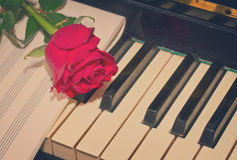 Red rose with notes paper on piano Royalty Free Stock Photography