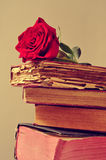 Red rose and old books Stock Photos