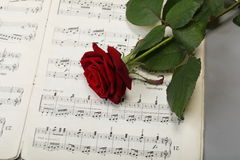 Red rose and old notes Sheet music Royalty Free Stock Photography
