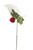Red rose and old notes Sheet music Stock Photography