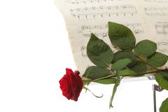 Red rose and old notes Sheet music Royalty Free Stock Photo