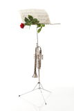 Red rose and old notes Sheet music Stock Image