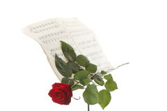 Red rose and old notes Sheet music Stock Photos