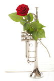 Red rose and old notes Sheet music trumpet Stock Photography