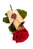 Red rose in old parchment. Stock Photography