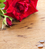 Red rose on a old wood board. Stock Photography