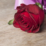 Red Rose on old wooden plank. Close up photo Stock Photo