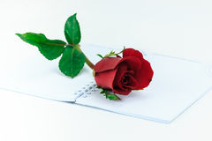 Red rose on the open book Stock Photos
