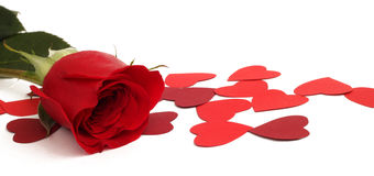 Red rose and paper hearts. Valentines Day Stock Photography