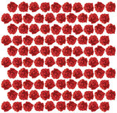 Red Rose pattern illustration Stock Photo