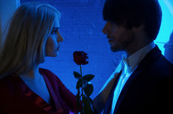 Red rose between people in love Royalty Free Stock Images