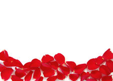 Red rose petal frame Stock Photography