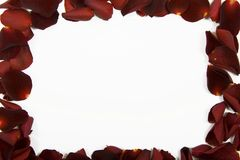 Red rose petal frame Royalty Free Stock Image