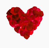 Red rose petal heart. Isolated on white background stock image