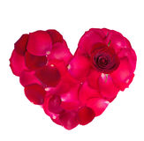 Red  rose petal heart valentine's. Isolated on white background Stock Image