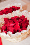 Red rose petals. Basket full of red rose petals stock photography
