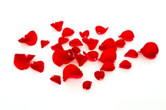 Red rose petals Stock Image