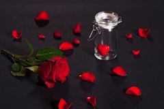 Red rose and petals. A Valentine's background with red rose petals and a heart in a glass jar stock photos