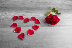 Red Rose and Petals Arranged in Heart Shape Royalty Free Stock Photo