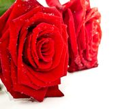 Red rose petals as a token of love Stock Photo