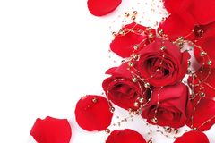 Red rose petals with beads Stock Image
