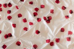 Red Rose Petals on Bed. Red rose petals scattered on a bed stock photography
