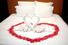 Red rose petals on bed. Rose petals and towels made of swan on bed in wedding day Stock Images