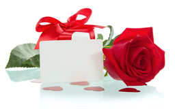 Red rose with petals and blank gift card for text Royalty Free Stock Photo
