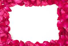 Red Rose Petals Border stock photo