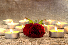 Red rose,petals with candle royalty free stock images